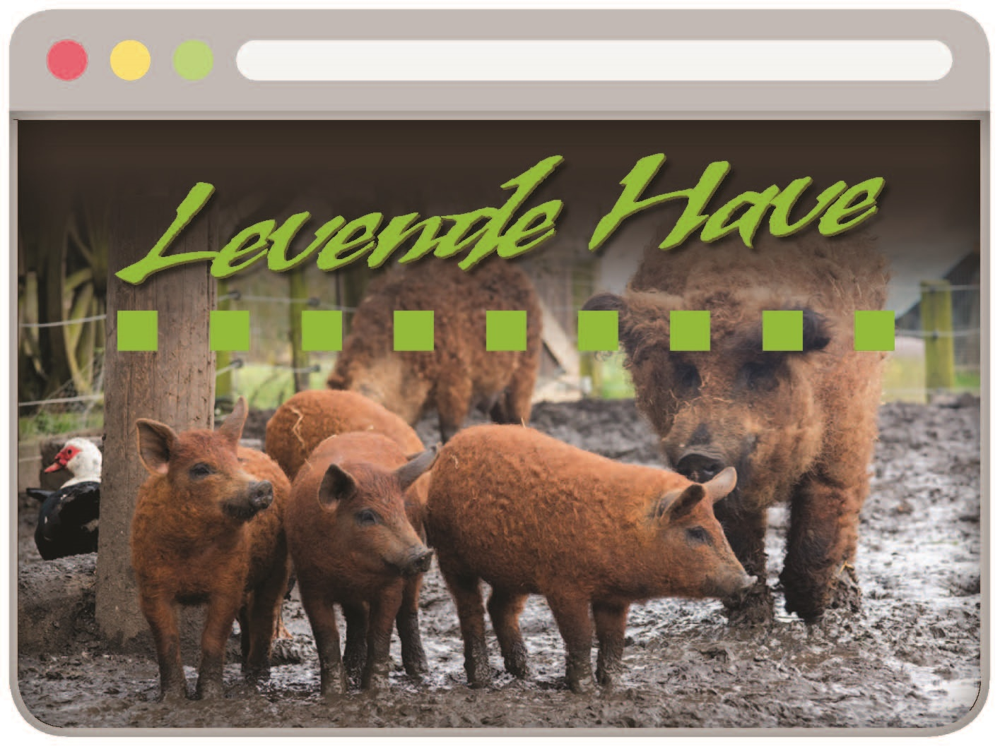 Website Levende Have